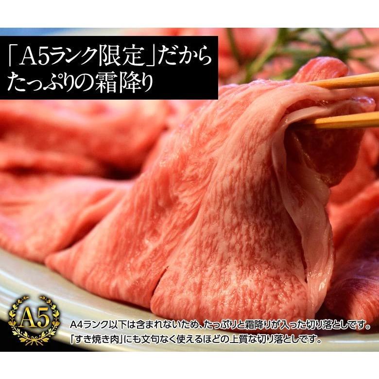牛 肉 黒毛和牛 A5 ランク限定 仙台牛 切り落とし 計1.5キロ BBQ 500g×3パックセット 冷凍  送料無料 tsukiji-ichiba2 03