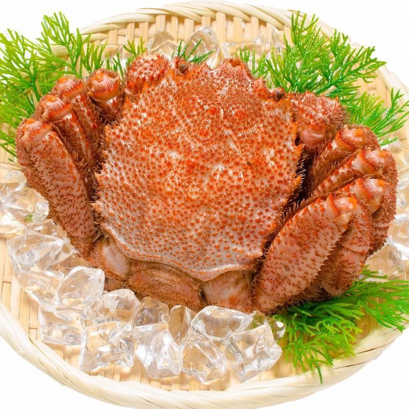 かにセット かにざんまい 築地 超特大 タラバガニ 7L 1kg かにしゃぶ用 特大 ズワイガニ ポーション 5L 500g 特大 タラバ爪 1kg 特大 毛がに 570g 正規品 お歳暮 tsukiji-ousama 08
