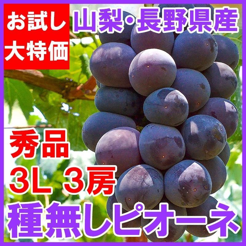 ピオーネ 山梨県勝沼産 種なし ピオーネ 1箱 2kg前後 650g前後×3房 3L サイズ 最高級特秀ランク (ぶどう ブドウ 葡萄)|tsukiji-ousama