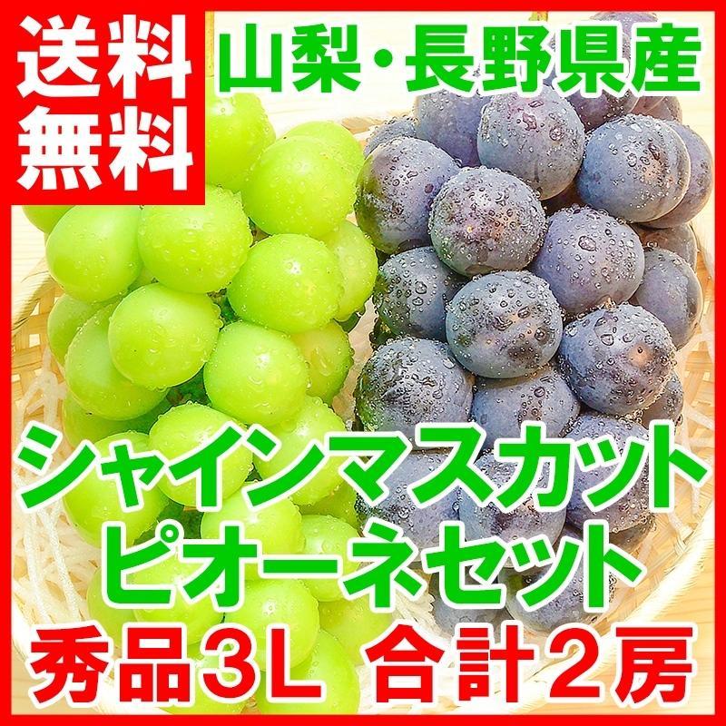 ピオーネ 650g前後 シャインマスカット 700g前後 セット 山梨県勝沼産産 1.3kg前後 合計2房 1箱 (ぶどう ブドウ 葡萄)|tsukiji-ousama