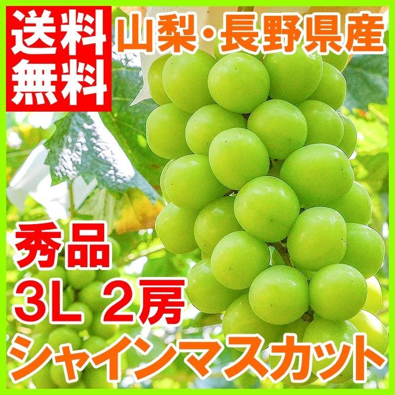 シャインマスカット 山梨県勝沼産 種なし シャインマスカット 1箱 1.4kg前後 700g前後 ×2房 3L 最高級特秀 (ぶどう ブドウ 葡萄)|tsukiji-ousama
