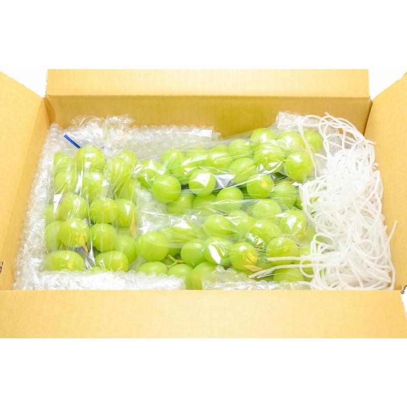シャインマスカット 山梨県勝沼産 種なし シャインマスカット 1箱 1.4kg前後 700g前後 ×2房 3L 最高級特秀 (ぶどう ブドウ 葡萄)|tsukiji-ousama|09