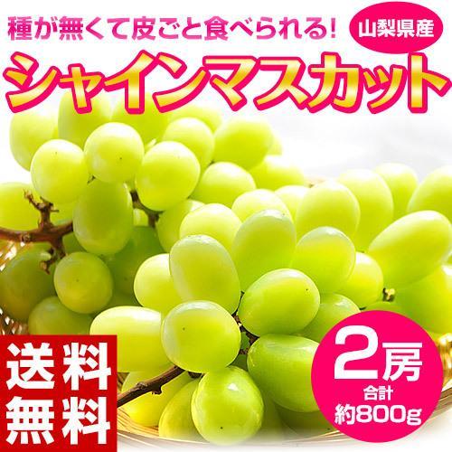 『シャインマスカット』 山梨県産 2房 計約800g ※常温または冷蔵 送料無料 tsukijiichiba