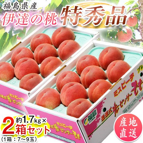 福島県産 25%OFF 伊達の桃 特秀品 約1.7kg×2箱 保証 1箱:7〜9玉 産地直送 送料無料 ※常温