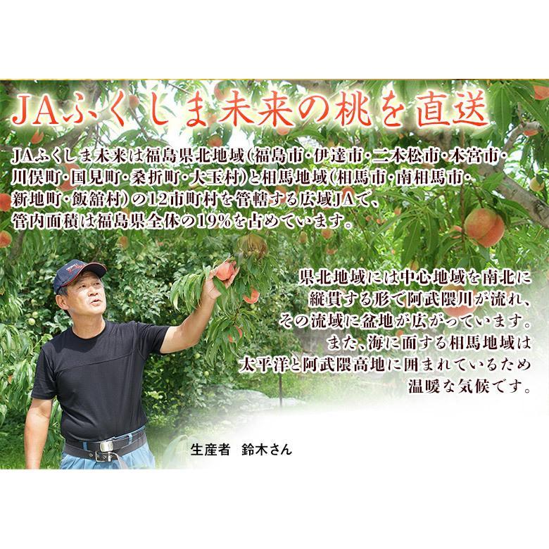 福島県産 「伊達の桃」 特秀品 約1.7kg×2箱 (1箱:7〜9玉) 産地直送 ※常温 送料無料|tsukijiichiba|05