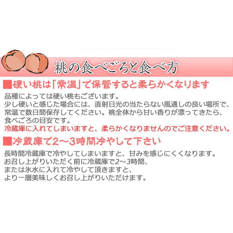 福島県産 「伊達の桃」 特秀品 約1.7kg×2箱 (1箱:7〜9玉) 産地直送 ※常温 送料無料|tsukijiichiba|08