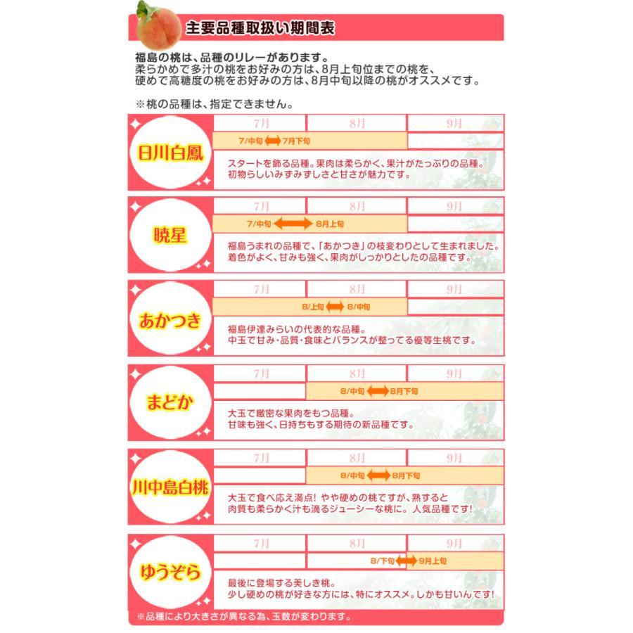 福島県産 「伊達の桃」 特秀品 約1.7kg×2箱 (1箱:7〜9玉) 産地直送 ※常温 送料無料|tsukijiichiba|09