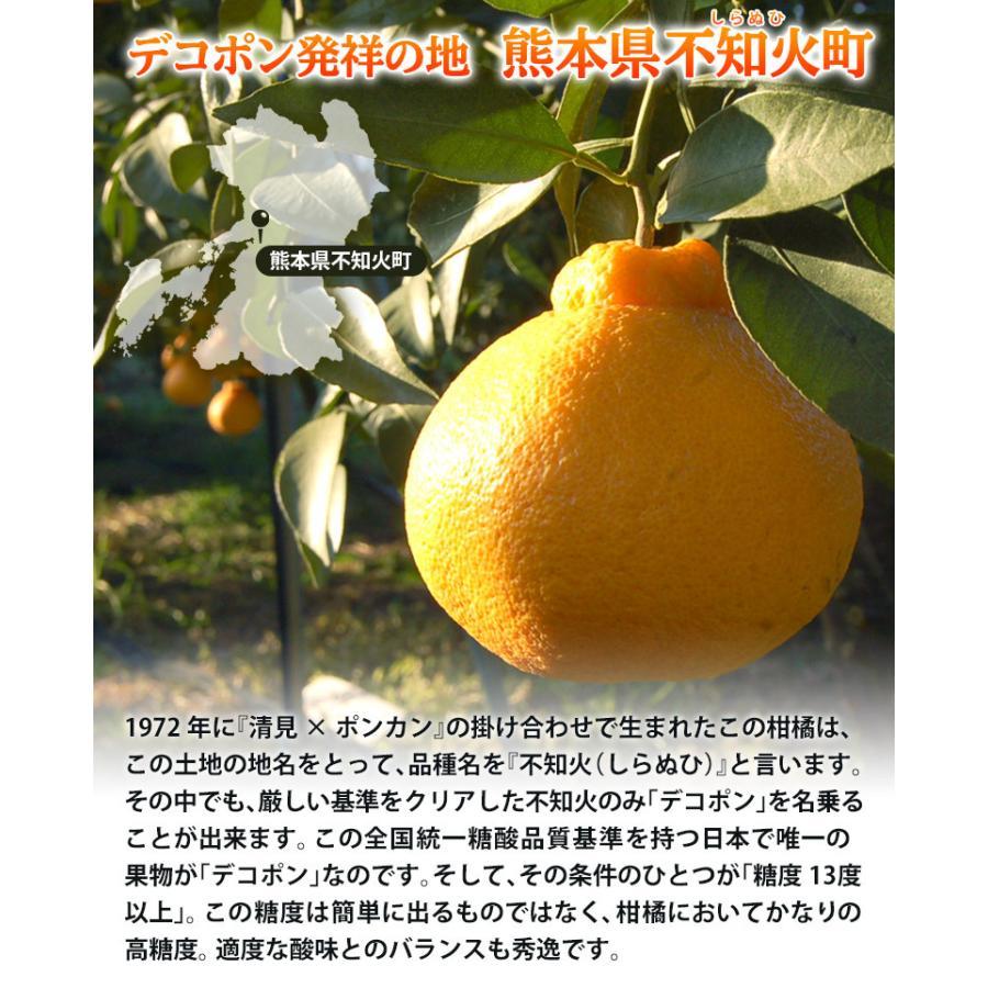 母の日 2021 熊本県産 糖度13度以上 デコポン 約2kg(風袋込) 7〜9玉 化粧箱 カーネーション(造花)+メッセージカード付※常温 送料無料|tsukijiichiba|04