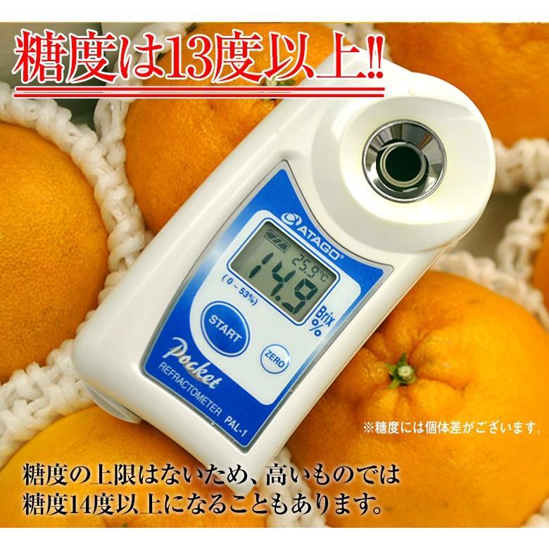 母の日 2021 熊本県産 糖度13度以上 デコポン 約2kg(風袋込) 7〜9玉 化粧箱 カーネーション(造花)+メッセージカード付※常温 送料無料|tsukijiichiba|05
