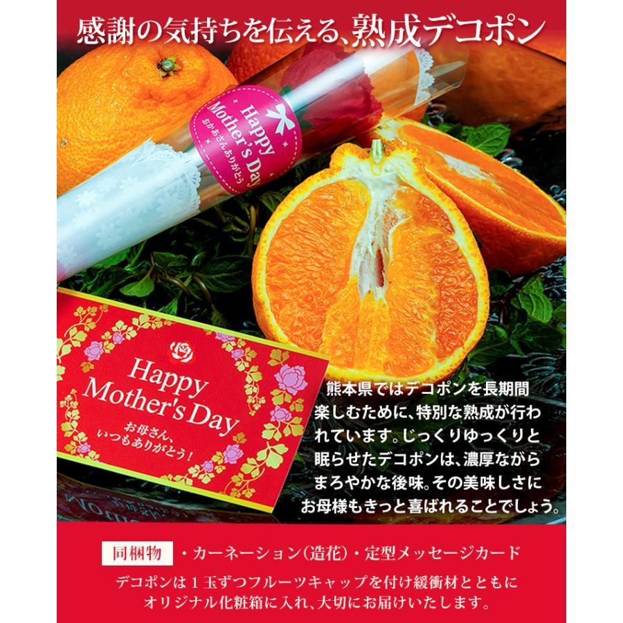 母の日 2021 熊本県産 糖度13度以上 デコポン 約2kg(風袋込) 7〜9玉 化粧箱 カーネーション(造花)+メッセージカード付※常温 送料無料|tsukijiichiba|06