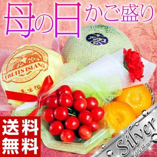 母の日 2021 《母の日ギフト》国産フルーツかご盛り Silver カーネーション(造花)・メッセージカード付き ※常温 送料無料|tsukijiichiba