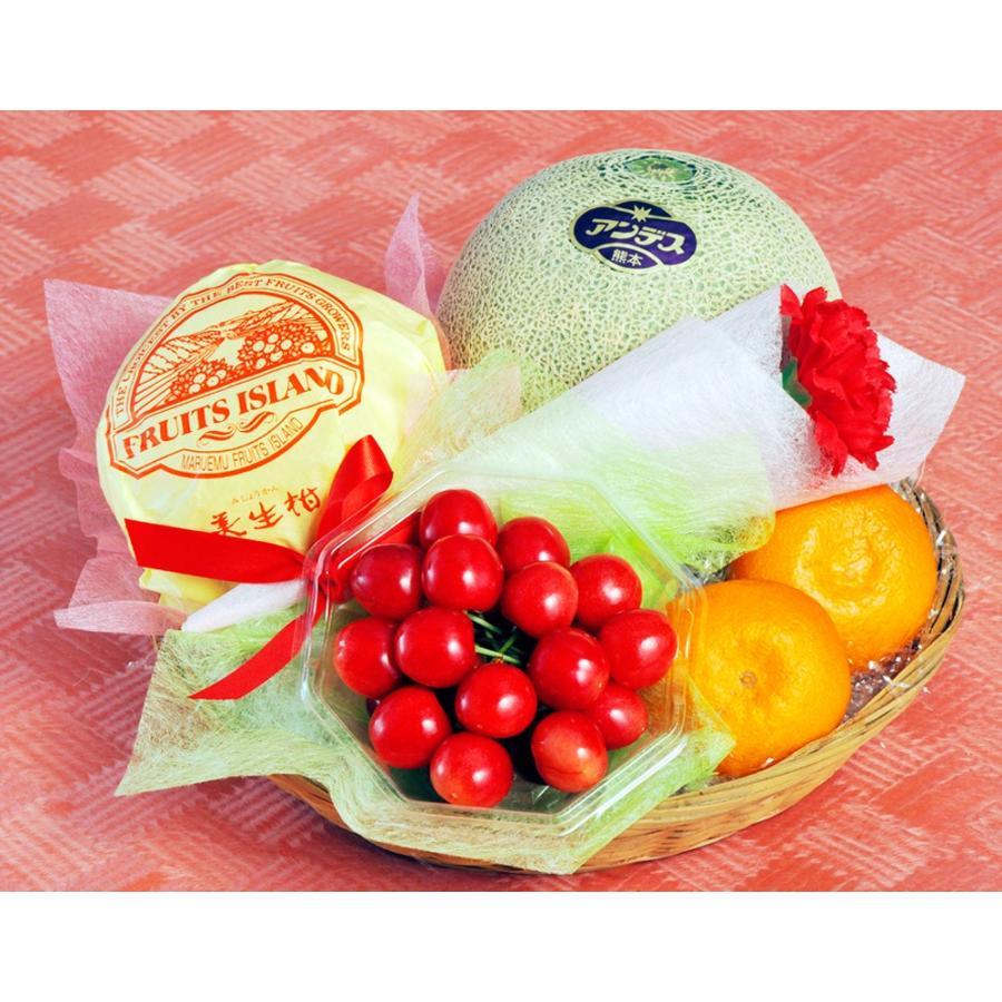 母の日 2021 《母の日ギフト》国産フルーツかご盛り Silver カーネーション(造花)・メッセージカード付き ※常温 送料無料|tsukijiichiba|02