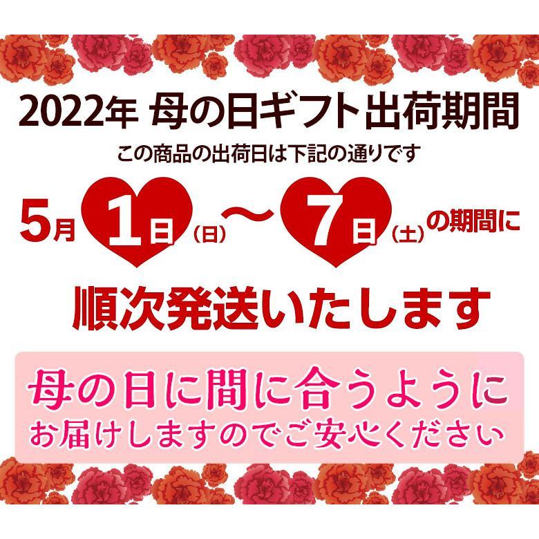 母の日 2021 《母の日ギフト》国産フルーツかご盛り Silver カーネーション(造花)・メッセージカード付き ※常温 送料無料|tsukijiichiba|08