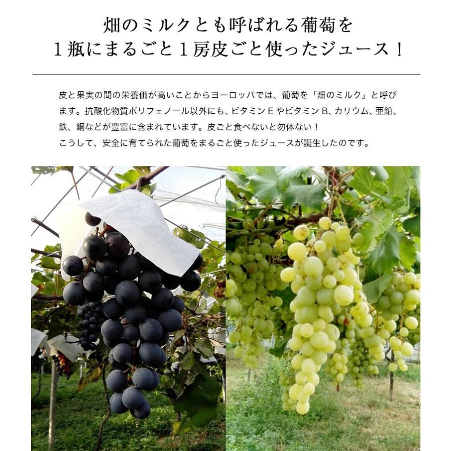 平岩農園 「種ありぶどうだけで作る6種のぶどうジュース」 180ml瓶×6本 ※常温 送料無料 tsukijiichiba 05