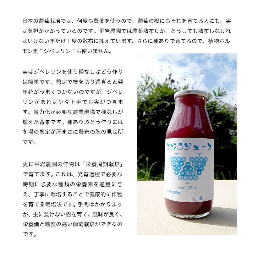 平岩農園 「種ありぶどうだけで作る6種のぶどうジュース」 180ml瓶×6本 ※常温 送料無料 tsukijiichiba 06