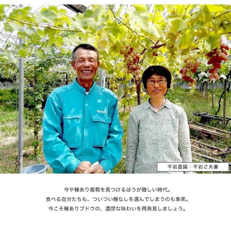 平岩農園 「種ありぶどうだけで作る6種のぶどうジュース」 180ml瓶×6本 ※常温 送料無料 tsukijiichiba 07