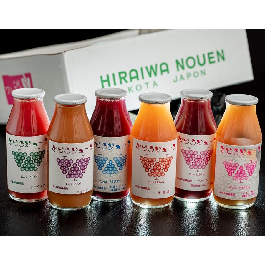 平岩農園 「種ありぶどうだけで作る6種のぶどうジュース」 180ml瓶×6本 ※常温 送料無料 tsukijiichiba 08