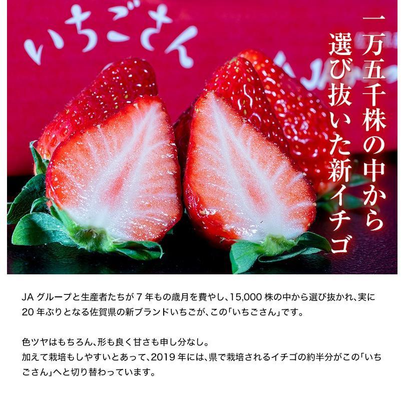 『いちごさん』 佐賀県産 2L〜4L (約240g×2パック) ※冷蔵|tsukijiichiba|02