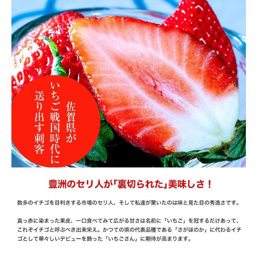 『いちごさん』 佐賀県産 2L〜4L (約240g×2パック) ※冷蔵|tsukijiichiba|03
