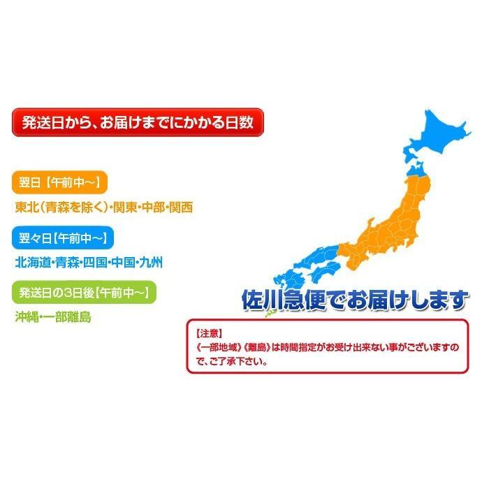 『いちごさん』 佐賀県産 2L〜4L (約240g×2パック) ※冷蔵|tsukijiichiba|09