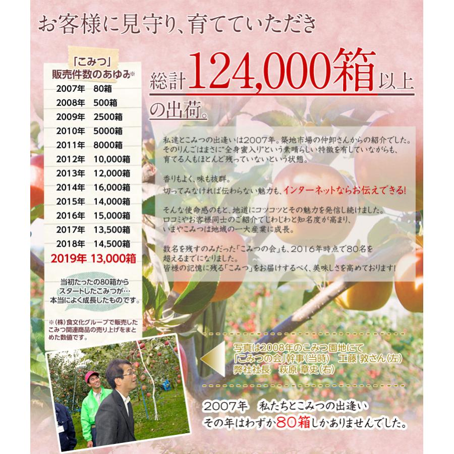 蜜入りりんご 『こみつ』 青森県石川地区産  約2kg (6〜12玉) ※常温 ※4箱まで同一配送先に限り送料1口|tsukijiichiba|11