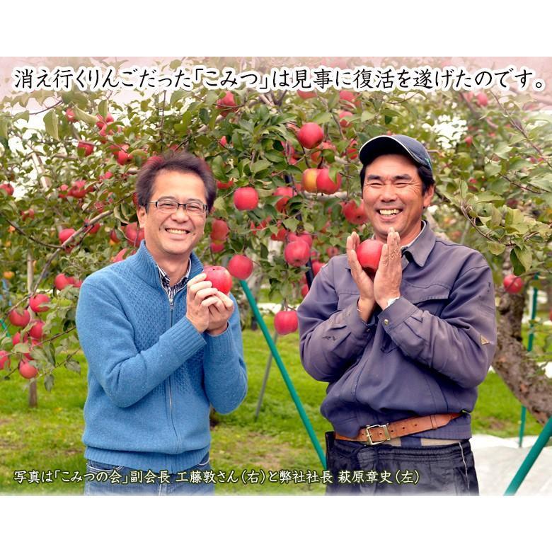 蜜入りりんご 『こみつ』 青森県石川地区産  約2kg (6〜12玉) ※常温 ※4箱まで同一配送先に限り送料1口|tsukijiichiba|12