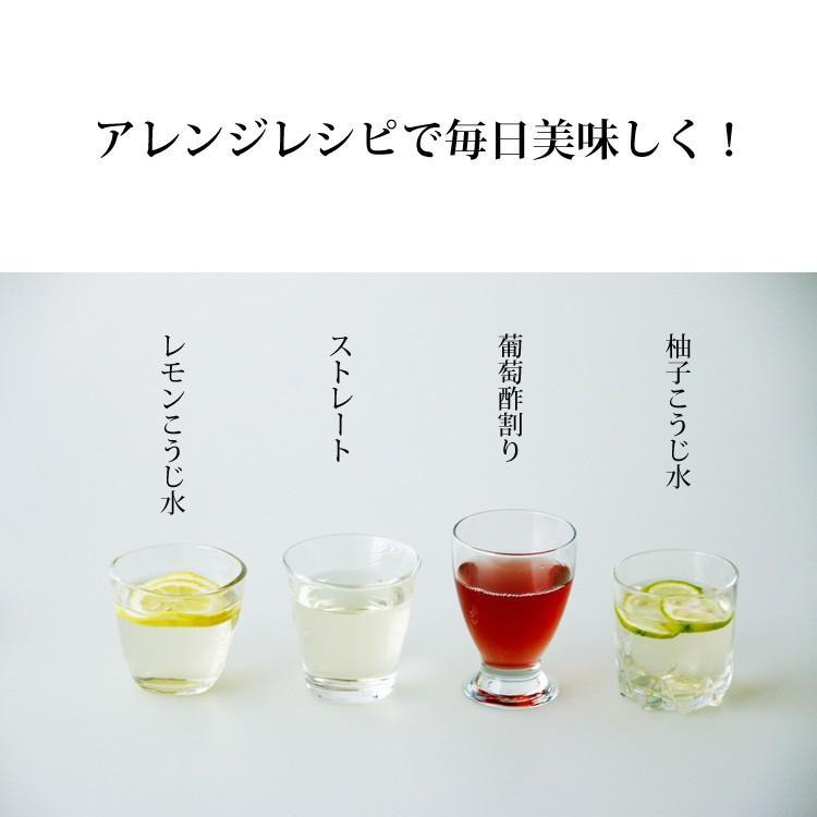 こうじや里村 米こうじ300g×10個|tukeru-shopping|04