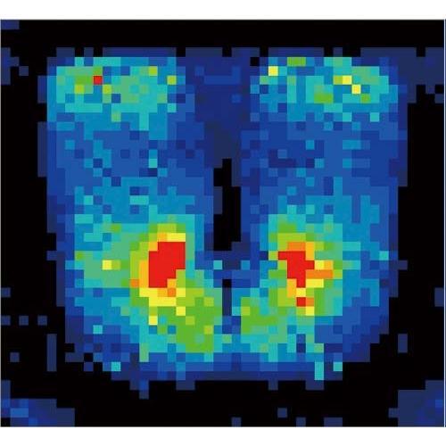 ●送料・組立・設置が無料  Z−ASL−110PV−ブル−C スタッキングチェア 座クッション ブルー kaf003722 5056-3043|tukishimado|04