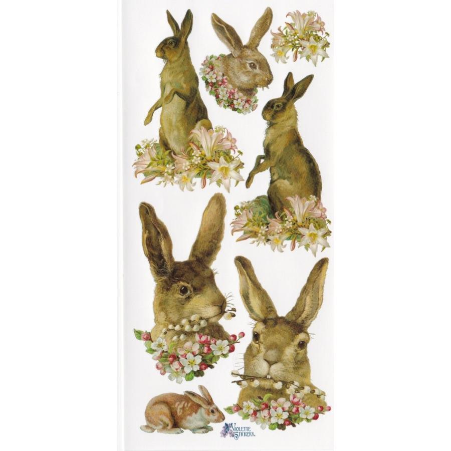 シール・野ウサギ tuliphouse