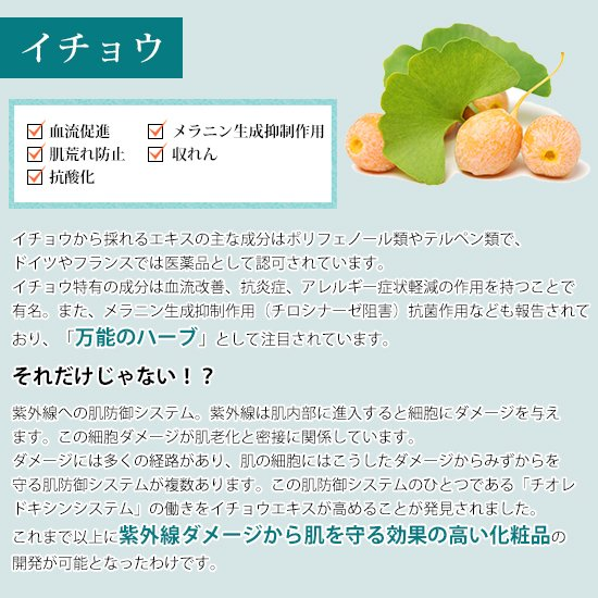 【チューブ】PINCHER body cream ピンシャー ボディークリーム  150ml|twentycompany|07