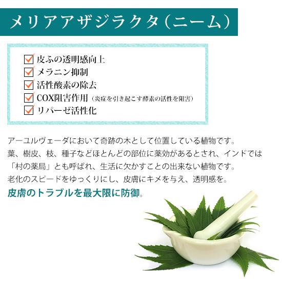 【チューブ】PINCHER body cream ピンシャー ボディークリーム  150ml|twentycompany|08