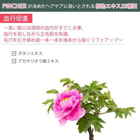 """ピンシャー シャンプー ショパン PINCHER shampoo """"chopin"""" twentycompany 05"""