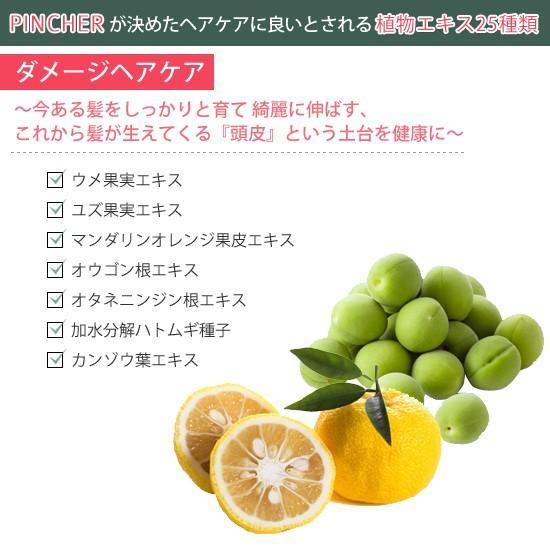 """ピンシャー シャンプー ショパン PINCHER shampoo """"chopin"""" twentycompany 06"""