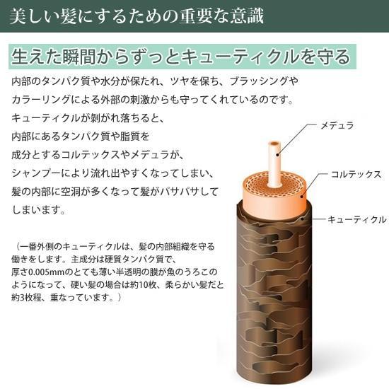 """ピンシャー シャンプー ショパン PINCHER shampoo """"chopin"""" twentycompany 07"""