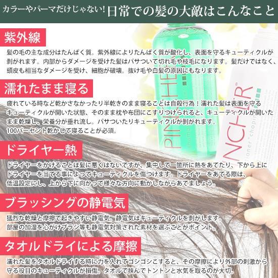 """ピンシャー シャンプー ショパン PINCHER shampoo """"chopin"""" twentycompany 08"""