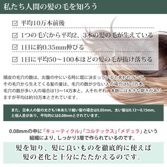 """ピンシャー シャンプー ショパン PINCHER shampoo """"chopin"""" twentycompany 09"""
