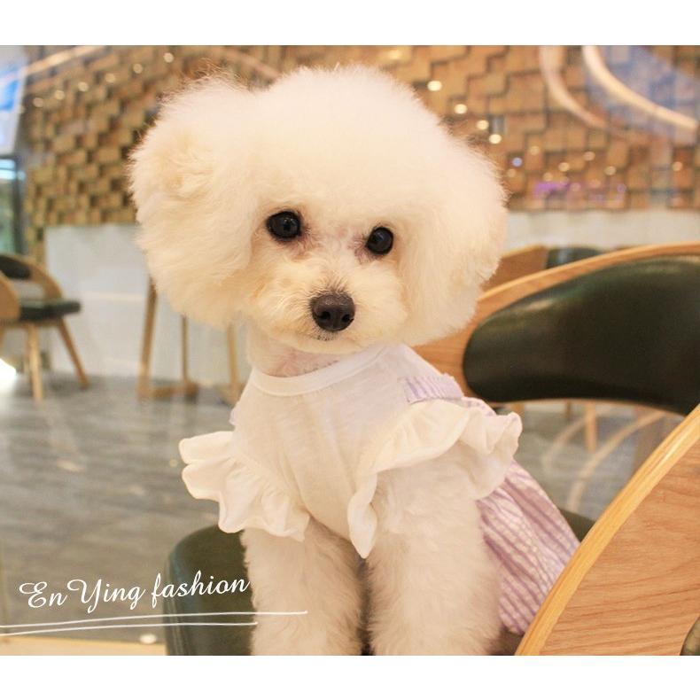 【送料無料!犬服・ドッグウェア・ワンピース・ドレス・夏・春・シンプル・プチプラ・おしゃれ・可愛い・かわいい】ふんわり袖のストライプワンピース|twiggy-style|04