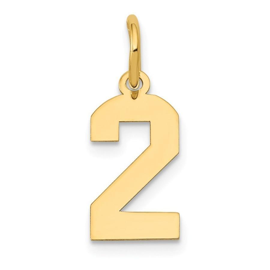 【メーカー直送】 1414 kイエローゴールド小番号2ペンダントチャームネックレススポーツファインジュエリーギフト用女性用彼女, 木らく部:6c4dae63 --- airmodconsu.dominiotemporario.com