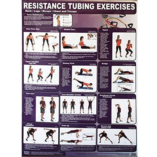 【爆買い!】 生産性フィットネス抵抗チューブエクササイズトレーニングポスターシリーズforホーム使用, 自然派化粧品ナチュラルスタイル:f7e07a82 --- airmodconsu.dominiotemporario.com