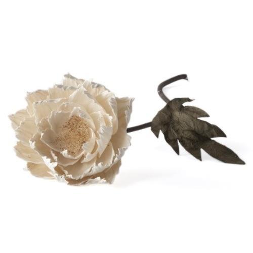 Lazy Susan Poppy Flower L 252001