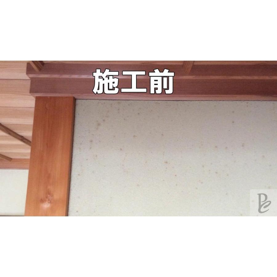 【強力】カビ取りMAX 土壁・砂壁用 Lサイズ 750ml|typebluejp|02