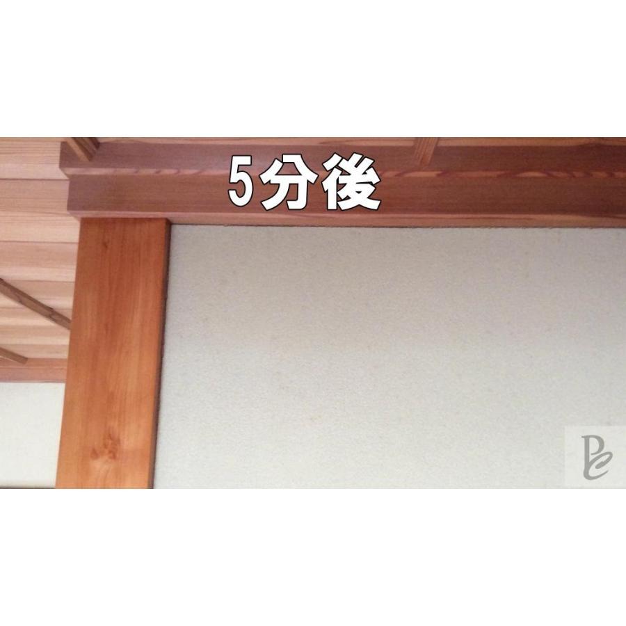 【強力】カビ取りMAX 土壁・砂壁用 Lサイズ 750ml|typebluejp|03