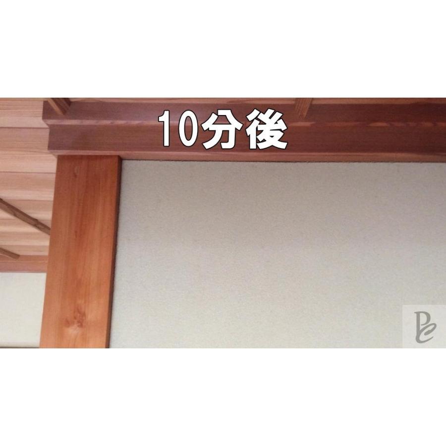 【強力】カビ取りMAX 土壁・砂壁用 Lサイズ 750ml|typebluejp|04