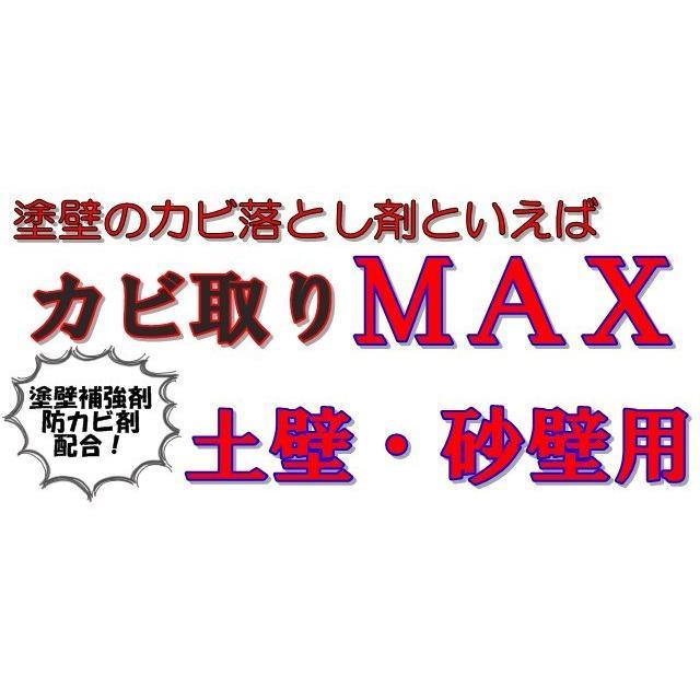 【強力】カビ取りMAX 土壁・砂壁用 Lサイズ 750ml|typebluejp|05