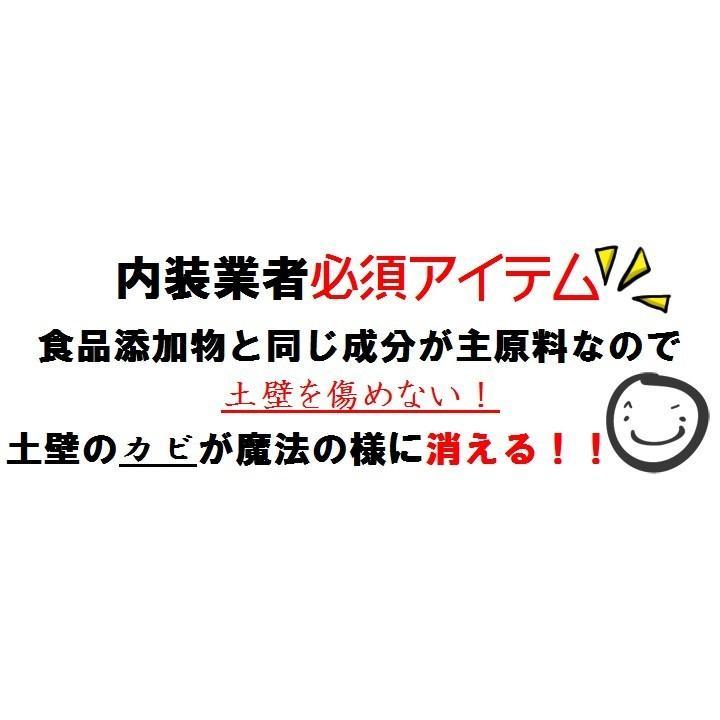 【強力】カビ取りMAX 土壁・砂壁用 Lサイズ 750ml|typebluejp|06