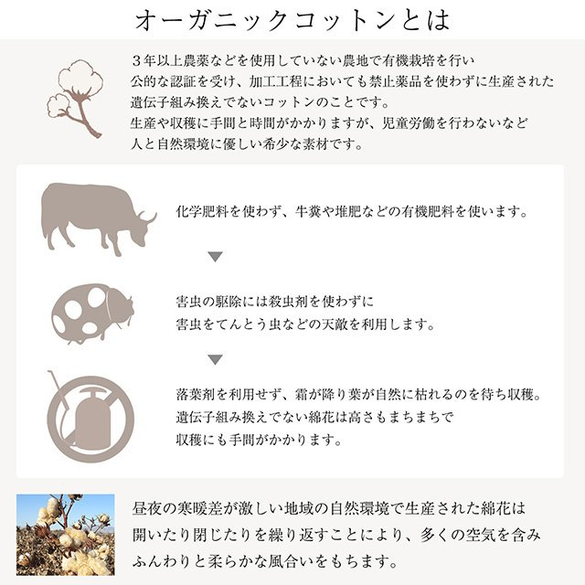 オーガニックコットン マスク 日本製 耳ひもタイプ ナチュラルホワイト 肌荒れ 敏感肌  洗える リボンマスク u-b-yumehan 10