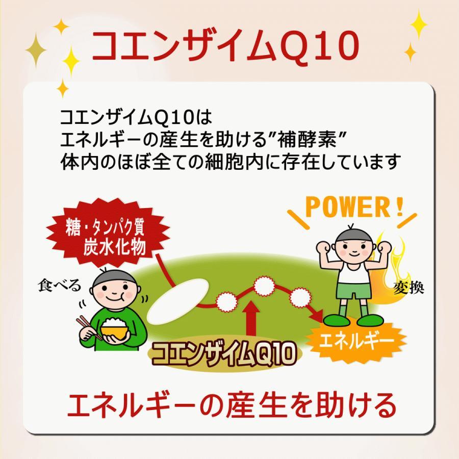 還元型ヘルツQ10 200粒 還元型コエンザイムQ10|u-koryoyakuten|05