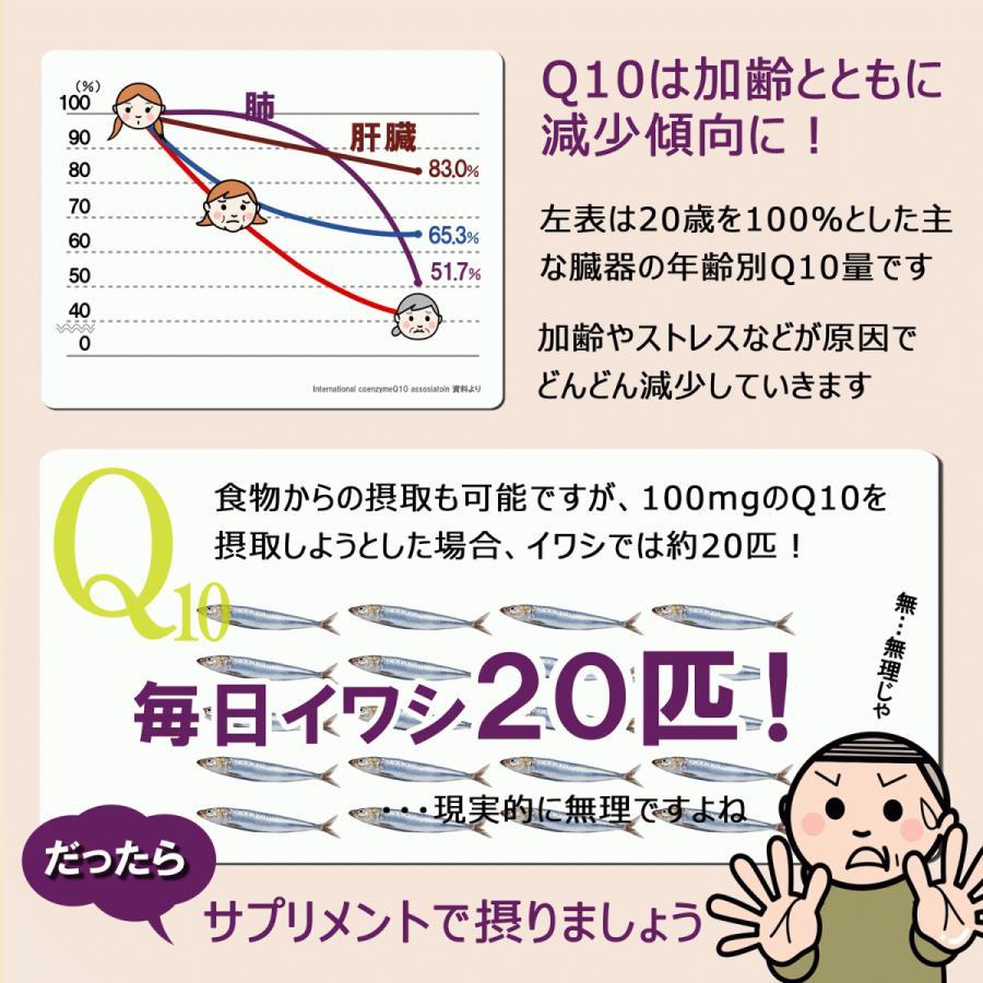 還元型ヘルツQ10 200粒 還元型コエンザイムQ10|u-koryoyakuten|06