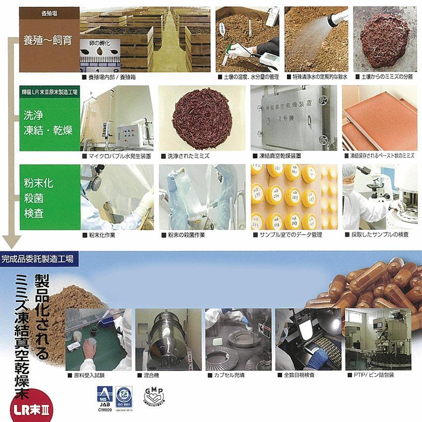 ルンブルレスベラEX PLUS ミミズ乾燥粉末(LR末III)含有90粒 u-koryoyakuten 03