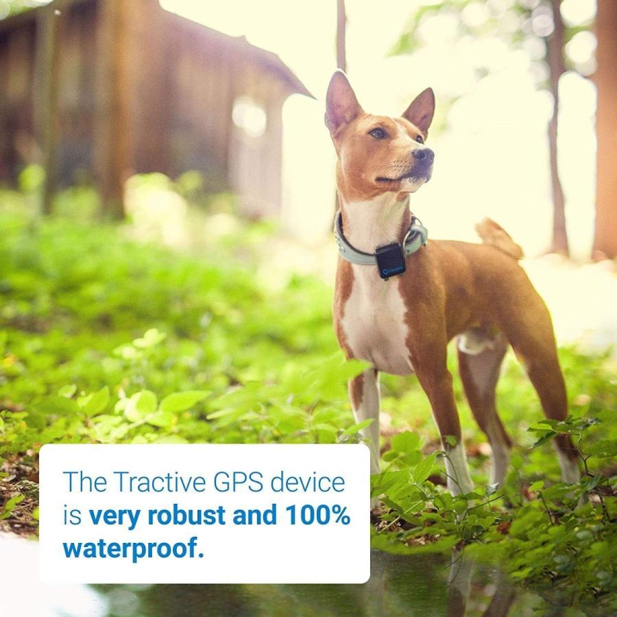 Tractive 3G 犬用GPSトラッカー - 犬の安全を守るペットファインダ(日本国内唯一の正規代理店)|ubtc2|05